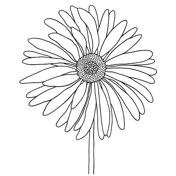Hình vẽ chưa tô màu hoa cúc cho bé tập tô (6)