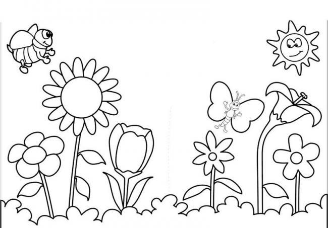Hình vẽ chưa tô màu hoa hướng dương cho bé tập tô (1)
