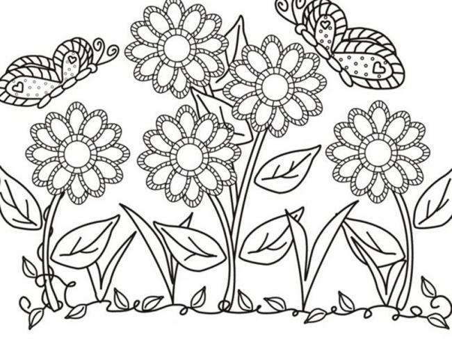 Hình vẽ chưa tô màu hoa hướng dương cho bé tập tô (5)