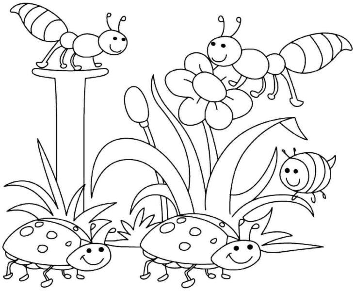 Hình vẽ chưa tô màu hoa hướng dương cho bé tập tô (7)