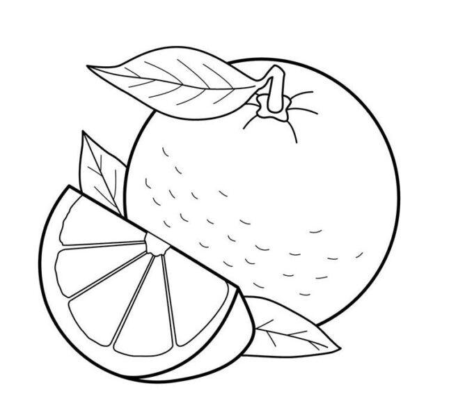 Hình vẽ chưa tô màu quả cam mọng nước cho bé tập tô (3)
