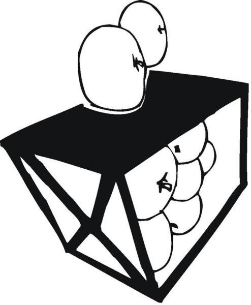 Hình vẽ chưa tô màu quả cam mọng nước cho bé tập tô (6)