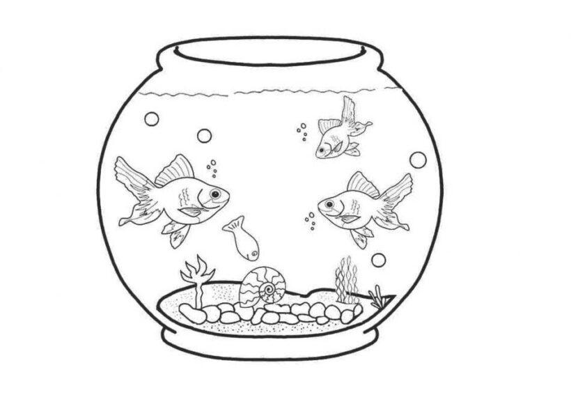 Hình vẽ đen trắng chú cá vàng cho bé tô màu (6)
