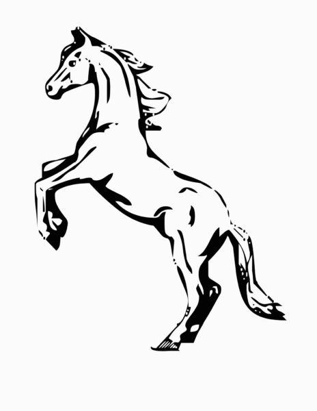 Mustang Wild Horse Coloring Page Free Printable Coloring for Mustang Horse Coloring Pages