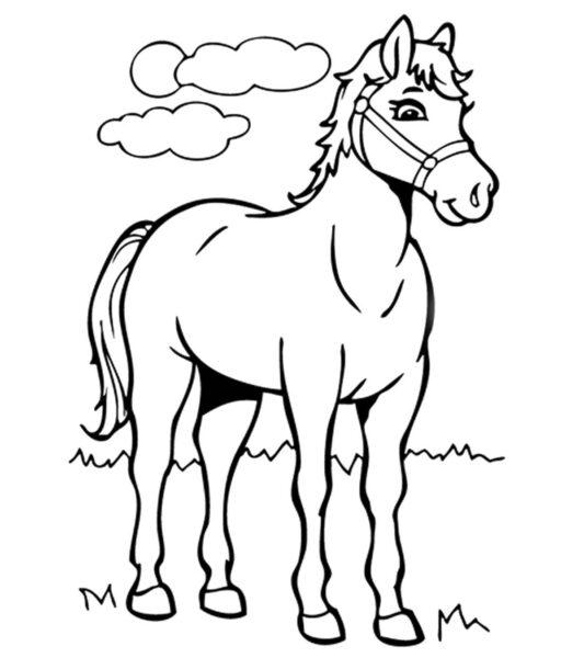 Hình vẽ đen trắng con ngựa dễ thương cho bé tô màu (2)