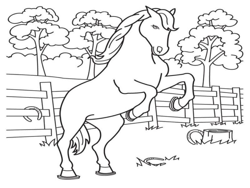 Hình vẽ đen trắng con ngựa dễ thương cho bé tô màu (5)