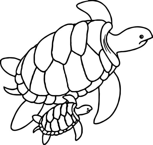 Hình vẽ đen trắng con rùa đẹp cho bé tô màu (1)