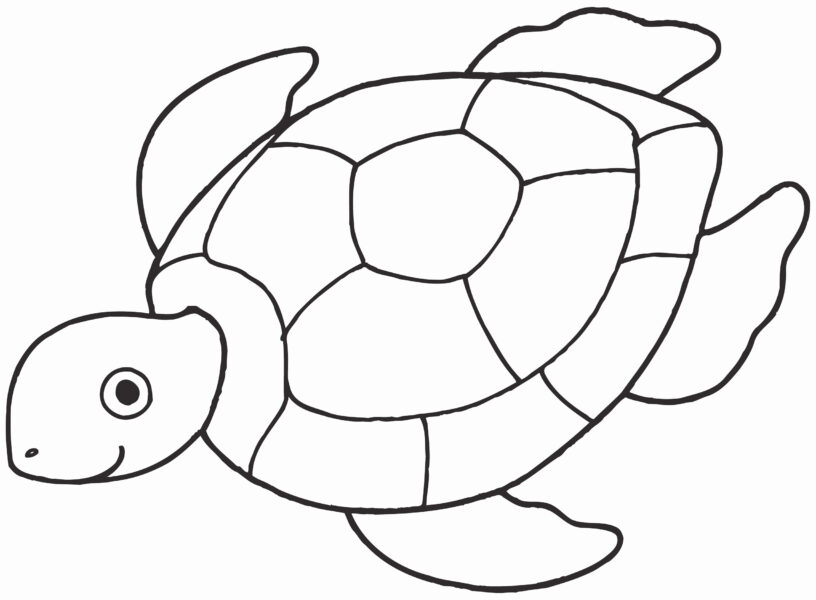 pictures of turtles to color Awesome Free Coloring Pages Ninja Turtles Photograph
