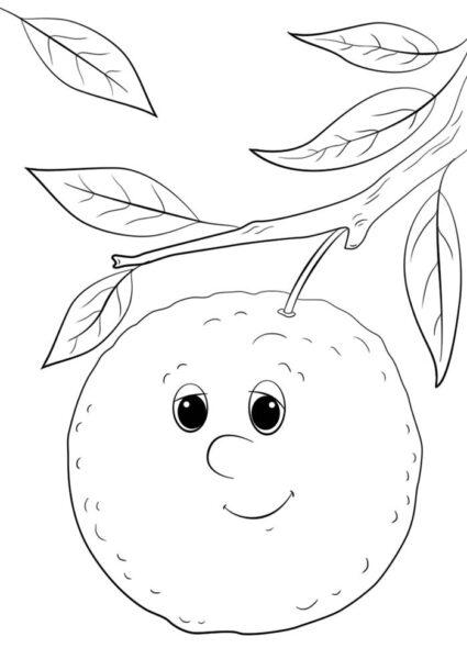 Giadinhsu.com - Tranh tô màu Quả cam cho bé