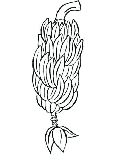 Hình vẽ đen trắng quả chuối cho bé tô màu (3)