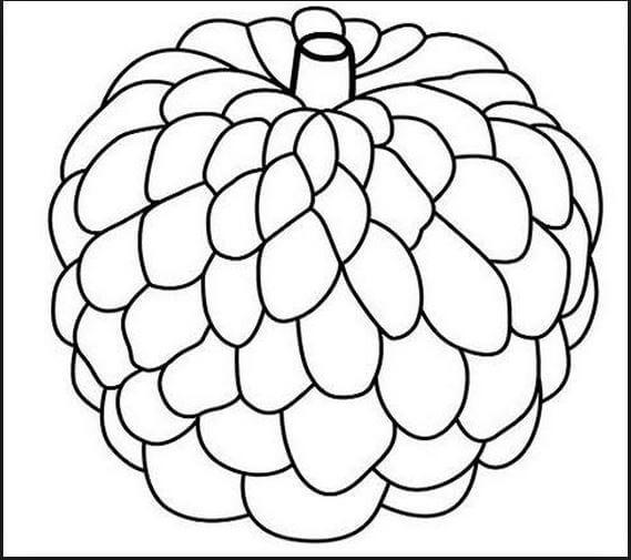 Hình vẽ đen trắng rau củ quả cho bé tô màu (7)