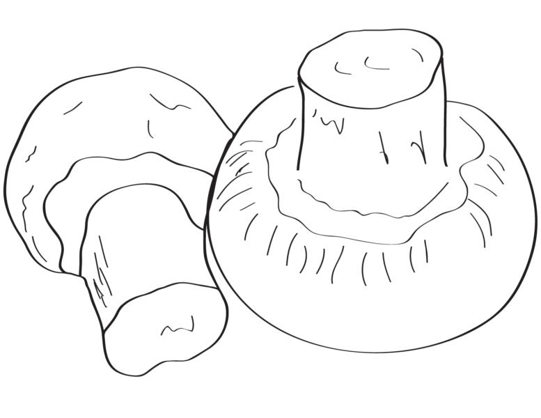 Hình vẽ tập tô cây nấm (2)