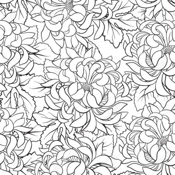 Seamless pattern with chrysanthemum in Japanese style. Outline d