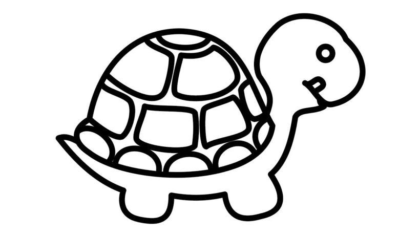 Mẫu tranh tô màu con rùa cho bé tập tô (4)