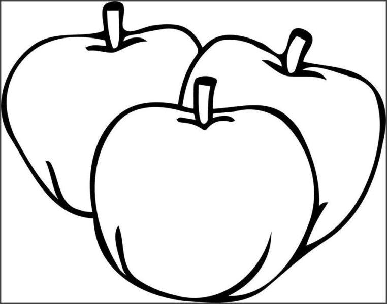 Mẫu tranh tô màu quả táo đơn giản cho bé tập tô (4)