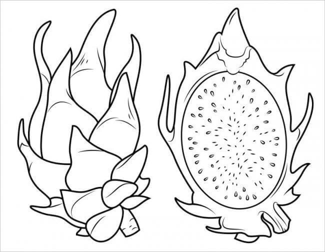 Mẫu tranh tô màu rau củ quả cho bé tập tô (7)