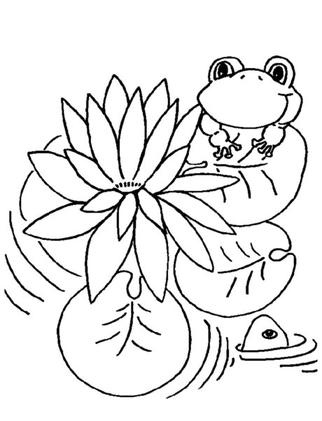Những tranh tô màu con ếch cho bé tập tô (5)