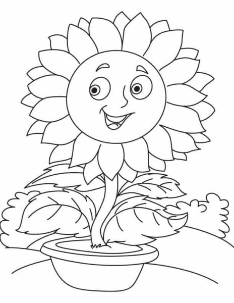 Những tranh tô màu hoa hướng dương cho bé tập tô (5)