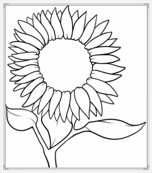 Những tranh tô màu hoa hướng dương cho bé tập tô (8)