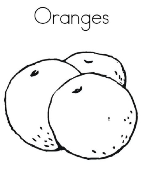 Những tranh tô màu quả cam cho bé tập tô (4)