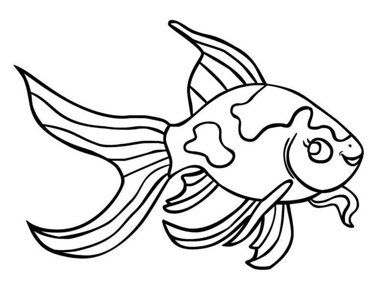 Tranh con cá vàng