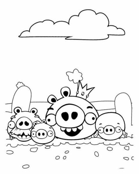 Tranh tô màu Angry Birds cho bé tập tô (34)