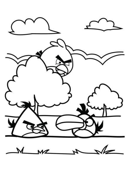 Tranh tô màu Angry Birds cho bé tập tô (36)
