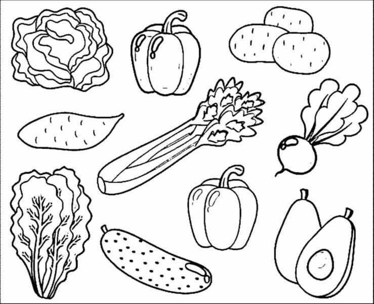 Tranh tô màu các loại rau