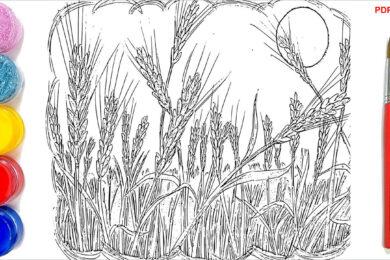 Tranh tô màu cánh đồng lúa đẹp nhất