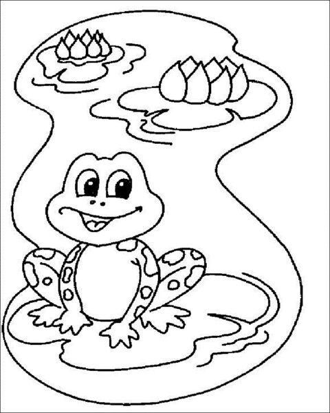 Tranh tô màu con ếch đẹp nhất cho bé tập tô (25)