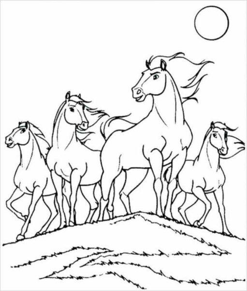 Tranh tô màu con ngựa đáng yêu cho bé tập tô (1)