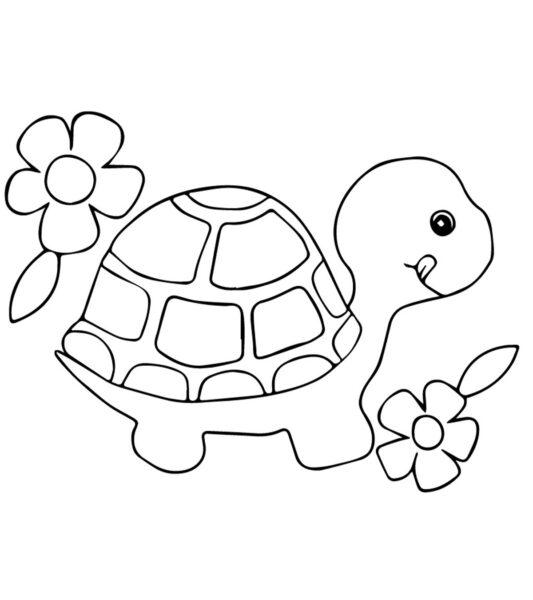 Tranh tô màu con rùa cho bé tập tô (27)