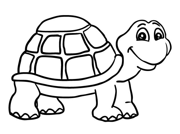 Tranh tô màu con rùa cho bé tập tô (28)