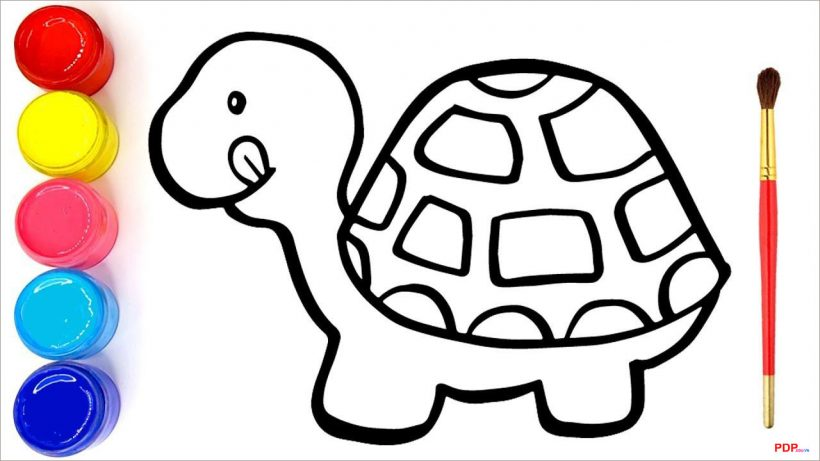 Tranh tô màu con rùa đẹp nhất