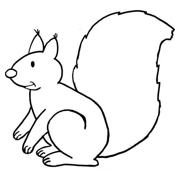 Tranh tô màu con sóc cho bé tập tô (17)