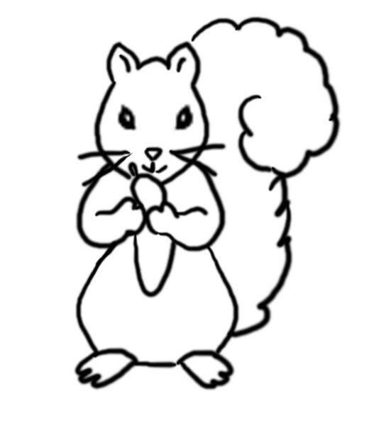 Tranh tô màu con sóc cho bé tập tô (4)