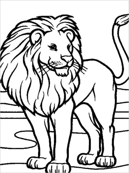 Tranh tô màu con sư tử đẹp nhất cho bé tập tô (14)
