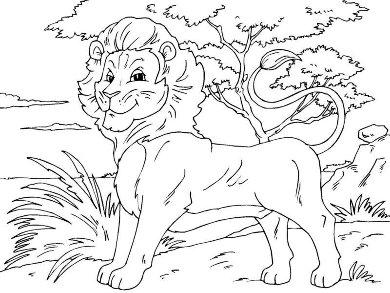 Tranh tô màu con sư tử đẹp nhất cho bé tập tô (15)