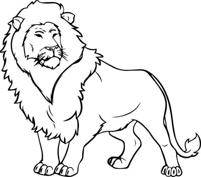 Tranh tô màu con sư tử đẹp nhất cho bé tập tô (17)
