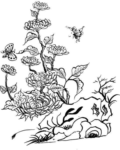 Tranh tô màu hoa cúc đẹp nhất cho bé tập tô (28)