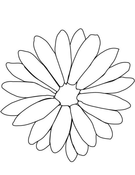 Tranh tô màu hoa cúc đẹp nhất cho bé tập tô (36)