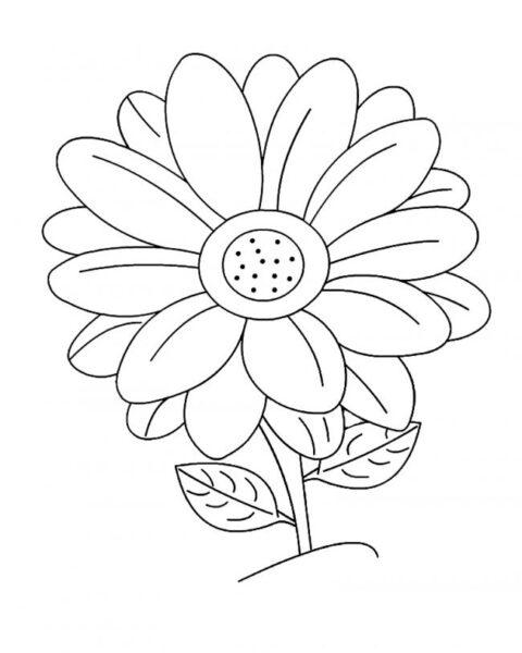 Tranh tô màu hoa hướng dương đẹp nhất cho bé tập tô (39)
