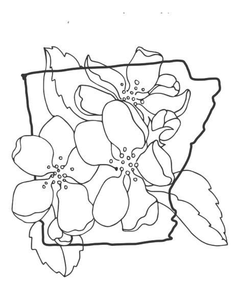 Tranh tô màu hoa mai đẹp cho bé tập tô (1)