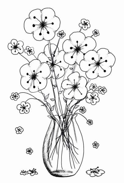 Tổng hợp các bức tranh tô màu hoa mai đẹp nhất dà