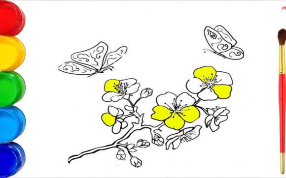 Tranh tô màu hoa mai đẹp nhất