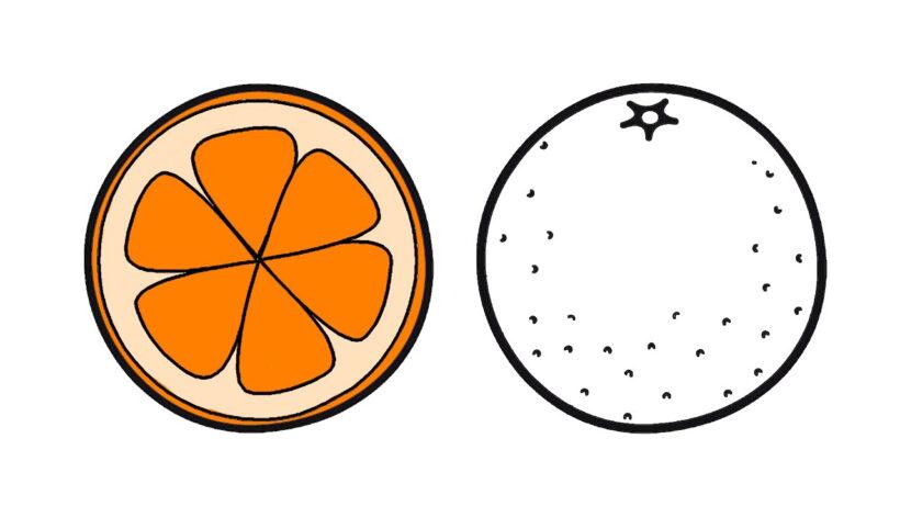 Tổng hợp các bức tranh tô màu quả cam đẹp nhất d