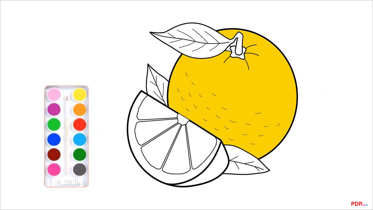 Tranh tô màu quả cam đẹp nhất