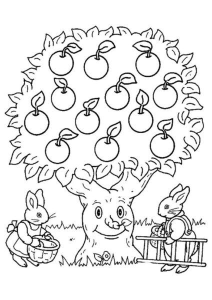 Tranh tô màu quả táo đẹp nhất cho bé tập tô (46)