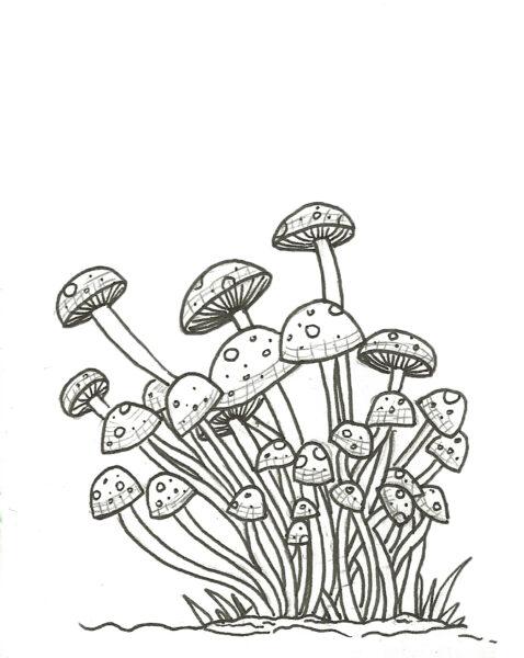 Tổng hợp các bức tranh tô màu cây nấm đẹp nhất