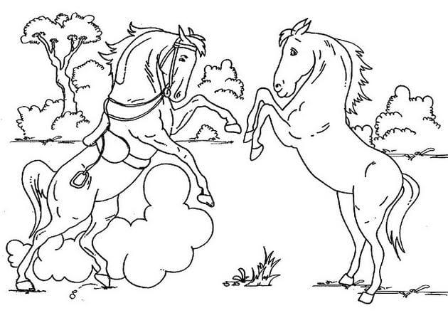 Tranh vẽ chưa tô màu cho bé 10 tuổi tập tô (4)